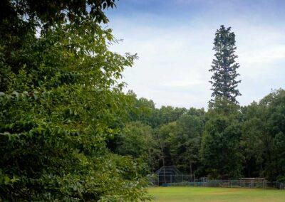 Perrymont Park, City of Lynchburg VA (120' Tree Pole Tower)